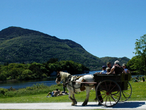 jaunting_car_killarney.jpg